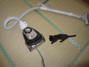 20100718soujiki_convert