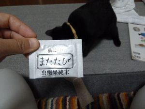 20101002_matatabi01_r