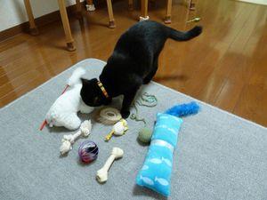 20110115_omocha01_r