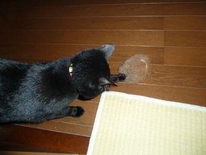 20110115_omocha06_r